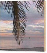 Palm Courtain II Wood Print