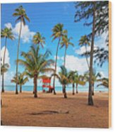 Palm Covered Tropical Beach Wood Print