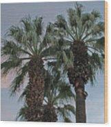 Palm Desert Palms  Wood Print