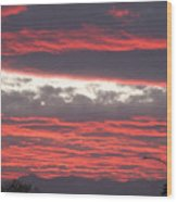 Palm Desert Sunset Wood Print