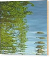Palm Flect IIi Wood Print