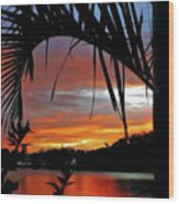 Palm Framed Sunset Wood Print