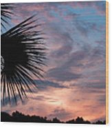Palm Frond At Dusk Wood Print