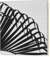 Palm Frond Black And White Wood Print