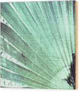 Palm Frond-lh Wood Print