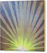 Palm Frond Light Wood Print