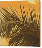 Palm Frond Sunset Wood Print