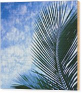 Palm Fronds And Clouds Wood Print