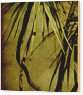 Palm Fronds Are Green Wood Print