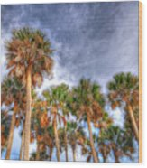 Palm Grove Wood Print