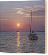 Palm Harbor Florida At Sunset Wood Print