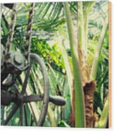 Palm House Pulley Wood Print