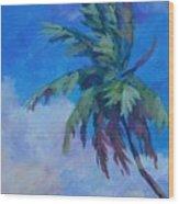 Palm In Evening Light Wood Print