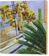 Palm Of The Dock Wood Print