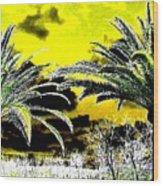 Palm Paradise   Wood Print