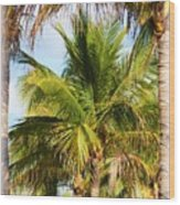 Palm Portrait Wood Print
