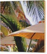 Palm Serenity Wood Print