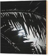 Palm Silhouettes Kaanapali Wood Print