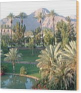 Palm Springs Ca Wood Print