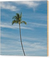 Palm Tree And Clouds Wood Print