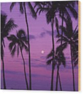Palm Tree And Moon Wood Print