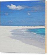 Palm Tree And Sandy Beach Wood Print