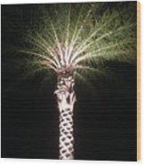 Palm Tree At Night Wood Print