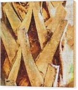Palm Tree Bark Wood Print
