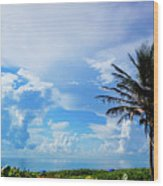 Palm Tree Dream Delray Beach Florida Wood Print