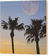 Palm Tree Full Moon Sunset Wood Print