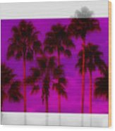 Palm Tree Heaven Wood Print