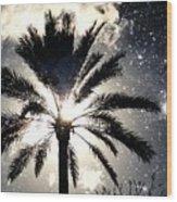Palm Tree In The Sun #3 Wood Print