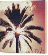 Palm Tree In The Sun Wood Print