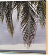 Palm Tree Leaves At The Beach Wood Print