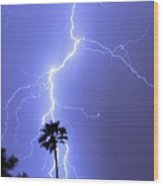 Palm Tree On Strike Wood Print
