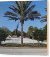 Palm Tree Psl. Wood Print