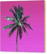Palm Tree Puerto Rico Wood Print