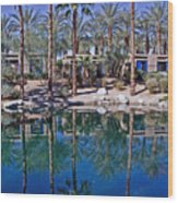 Palm Tree Reflections Wood Print