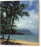 Palm Tree Shadows Wood Print