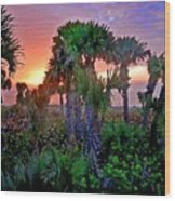 Palm Tree Sunset Wood Print