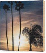 Palm Tree Sunset Silhouette Wood Print
