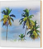 Palm Trees - 5 Wood Print