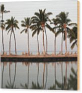 Palm Trees And Beach Chairs Wood Print