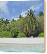 Palm Trees And Exotic Vegetation On The Beach Of An Island In Maldives Wood Print