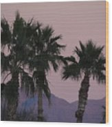 Palm Trees And Mountains At Sunset #1 Wood Print