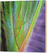 The Palms Hawaii Wood Print