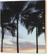 Palm Trees At Sunset Wood Print