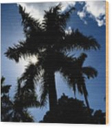 Palm Trees In Silhouette Wood Print