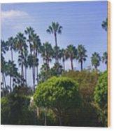 Palm Trees. My Beautiful California Wood Print
