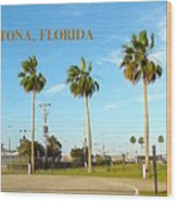 Palm Trees Of Daytona Florida Wood Print